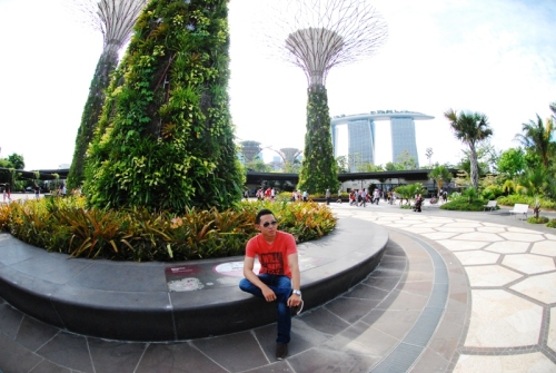 backpacker ke singapore