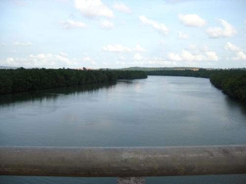view dari atas jembatannya. bakau.. (´⌣`ʃƪ)