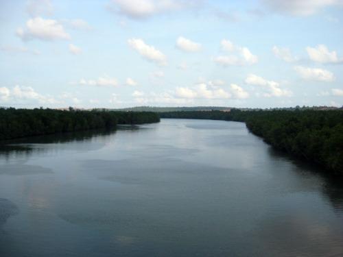 Muara sungai busung