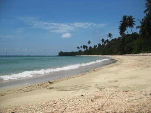 Pantai Trikora! \(ˆ▽ˆ)/