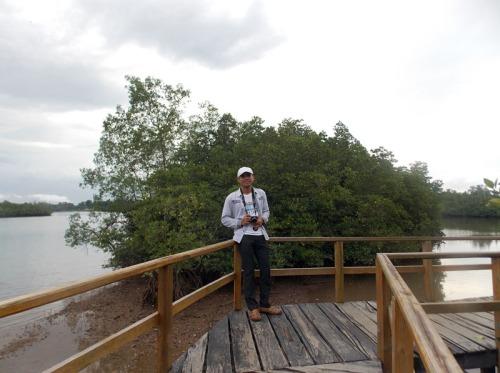 mangrove sei carang 91