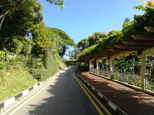 mount faber park 8