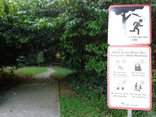 Marang Trail, where the adventure begins