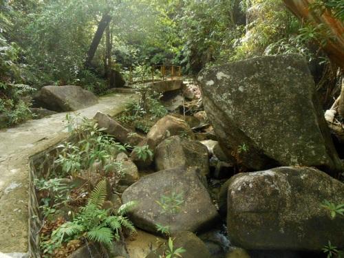 Jalur menuju Air Terjun Pongkar